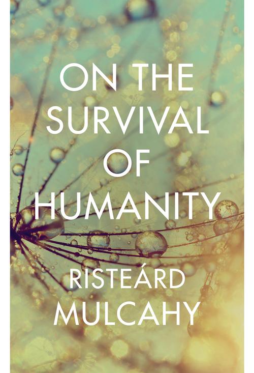 Risteárd Mulcahy essay